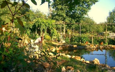 C'est quoi la permaculture ?